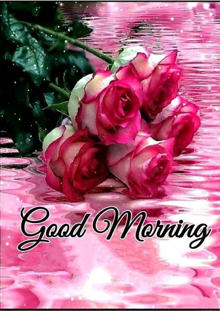 Good Morning Dil Se Hamesha Khush Rahi Image Uploaded On June 5 2020 2 25 A M Damadam